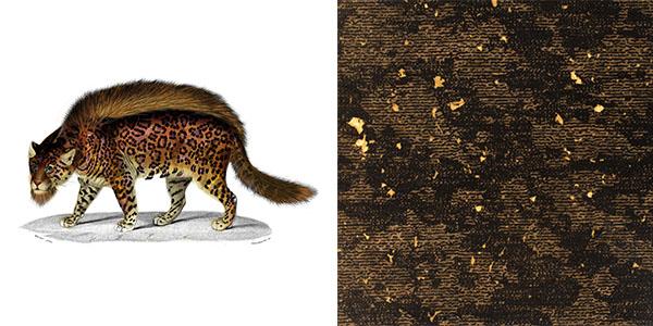 bearded-leopard-ERDU.jpg