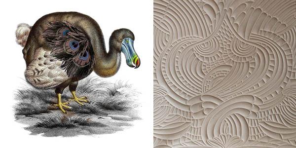 dodo-pavone-U436.jpg