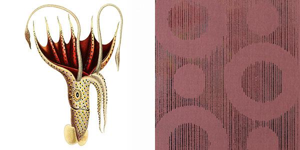 umbrella-squid-JRVX.jpg